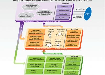 Diagram: 3-Phase Diagram / Strategic Framework