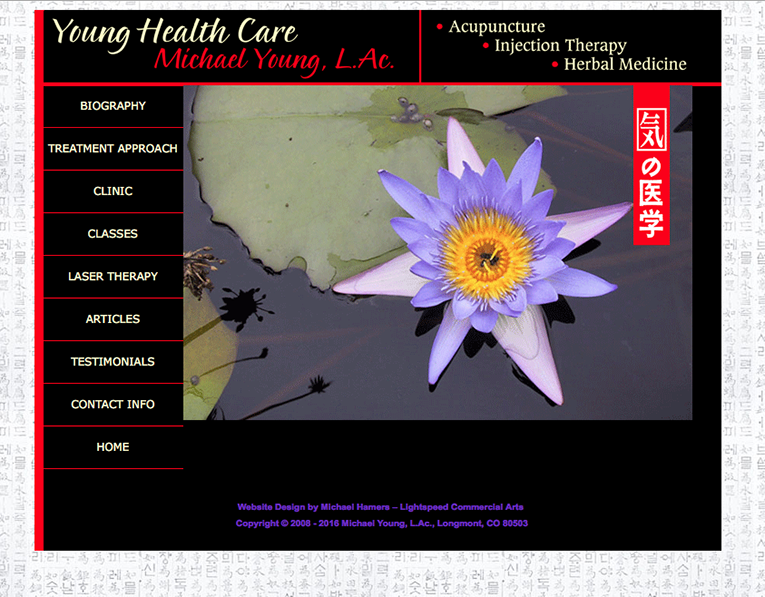 "Web Design: ""Acupuncturist / Young Healthcare"